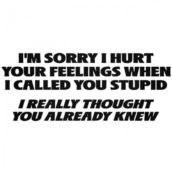 Hurt Feelings Stupid Quote...