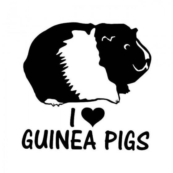 I Love Guinea Pigs Pet...